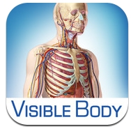 visible-body-icon